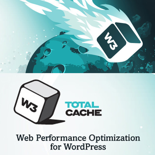 W3 Total Cache スマホ対策
